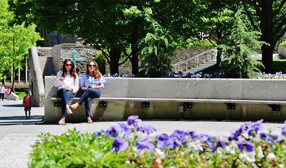 Two students sit on a long bench with flowers in the f要么eground