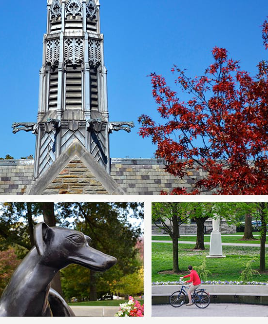 Several photos of buildings and statues on campus