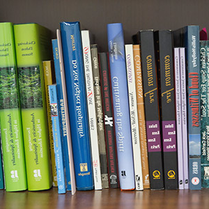 Books resting on a bookshelf